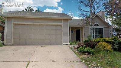 Single Family Home For Sale: 3835 Topsail Drive