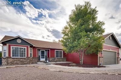 Falcon Single Family Home For Sale: 11682 Allendale Drive