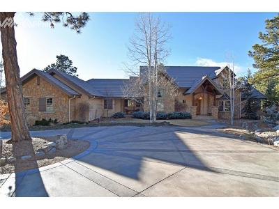 El Paso County Single Family Home For Sale: 12840 Bridle Bit Road