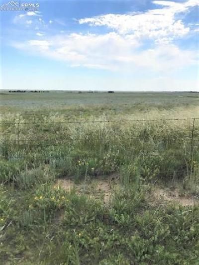 Residential Lots & Land For Sale: 1025 Ramah Highway