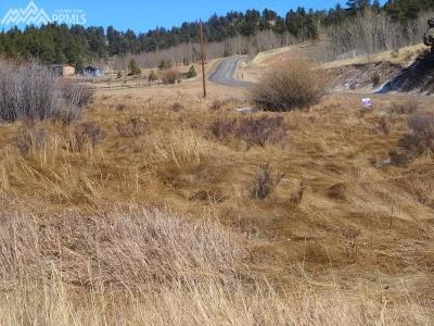 Lake George Residential Lots & Land For Sale: 44 Cheyenne Trail