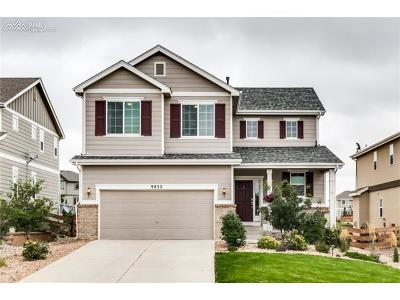 El Paso County Single Family Home For Sale: 9852 Beryl Drive