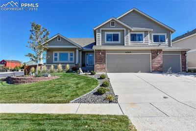 Colorado Springs Single Family Home For Sale: 4985 Nugent Drive