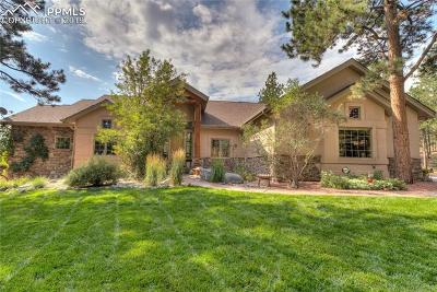 Woodland Park Single Family Home For Sale: 110 Morning Star Circle