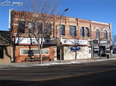 Commercial For Sale: 108 Main Street