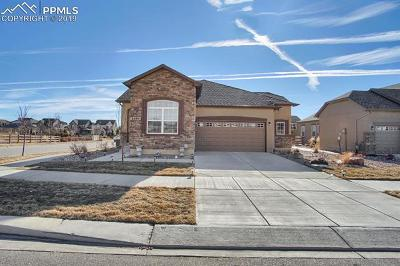 Single Family Home For Sale: 5595 Cisco Drive