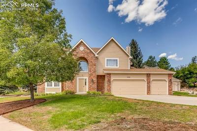 Colorado Springs Single Family Home For Sale: 7210 Sagerock Court