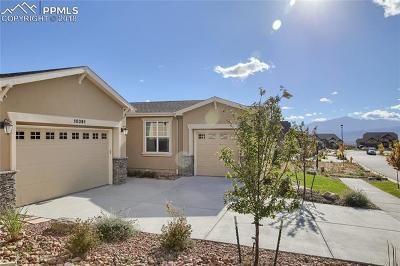 Colorado Springs Single Family Home For Sale: 10091 Coyote Song Terrace