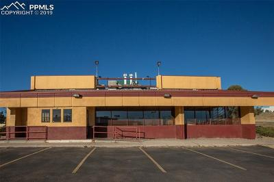 Colorado Springs Commercial For Sale: 302 N Academy Boulevard