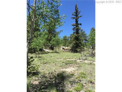 Lake George Residential Lots & Land For Sale: Tbd Elk View Road