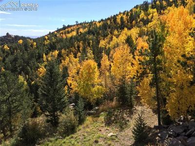 Manitou Springs CO Residential Lots & Land For Sale: $60,000