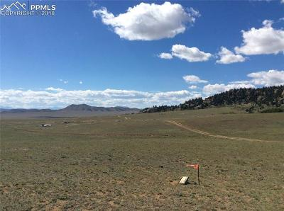 Lake George Residential Lots & Land For Sale: Tbd County 333 Road
