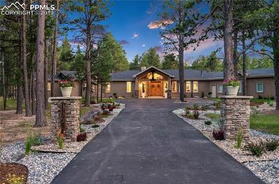 Colorado Springs Single Family Home For Sale: 11781 Smokey Hill Grove