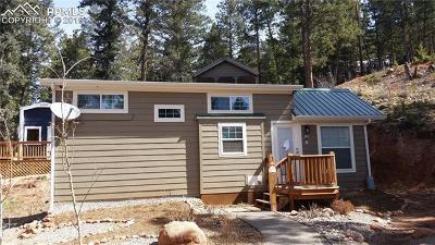 Woodland Park Single Family Home For Sale: 19253 Highway 24 Highway #Lot 35