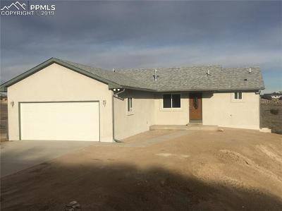 Single Family Home For Sale: 316 S Hidalgo Drive