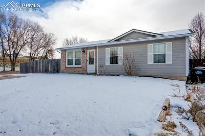Colorado Springs Single Family Home For Sale: 5145 Webbed Foot Way