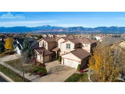 Pine Creek Single Family Home For Sale: 3286 Promontory Peak Drive
