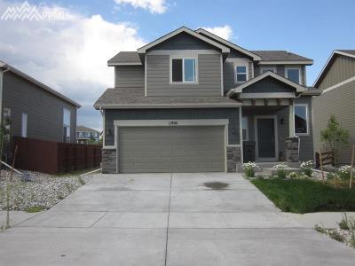 Peyton, Falcon Single Family Home For Sale: 11956 Eagle Crest Court