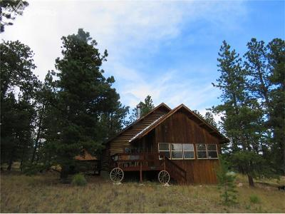 Lake George CO Single Family Home For Sale: $275,000
