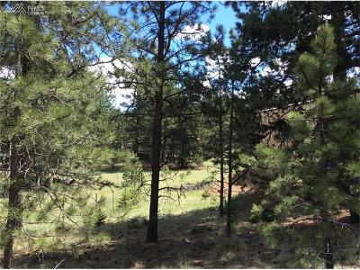 Residential Lots & Land For Sale: 81 Rhyolite Lane