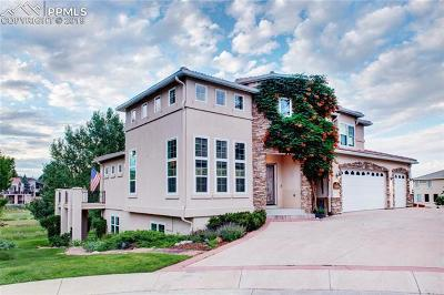 Colorado Springs Single Family Home For Sale: 224 Pisano Heights
