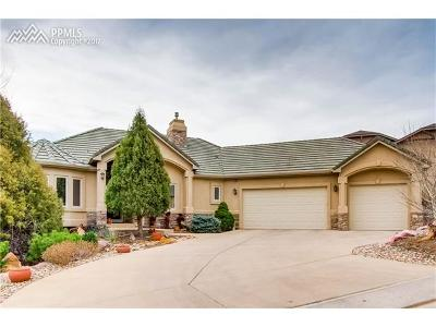 Colorado Springs Single Family Home For Sale: 4841 Diablo Valley Court