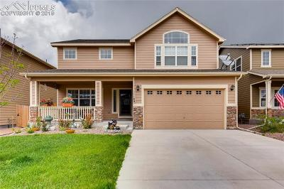 Single Family Home For Sale: 11189 Scenic Brush Drive