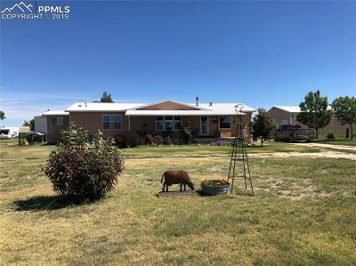 Calhan Single Family Home For Sale: 25598 E Garrett Road