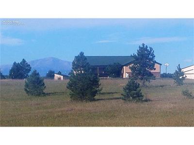 Peyton Single Family Home For Sale: 17085 Oak Brush Loop