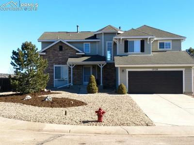 Single Family Home For Sale: 17135 Mountain Lake Drive