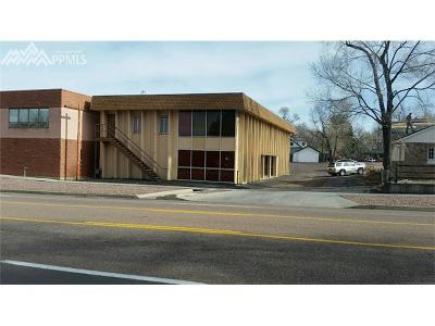 Commercial For Sale: 21 N Union Boulevard