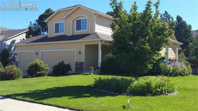 Monument Single Family Home For Sale: 17248 Buffalo Valley Path