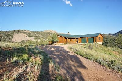 Florissant Single Family Home For Sale: 600 Navajo Trail