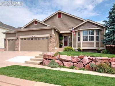 Colorado Springs Single Family Home For Sale: 4176 Cherryvale Drive