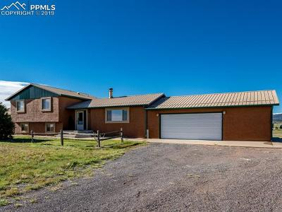 Pueblo Single Family Home For Sale: 8412 W Highway 96 Highway