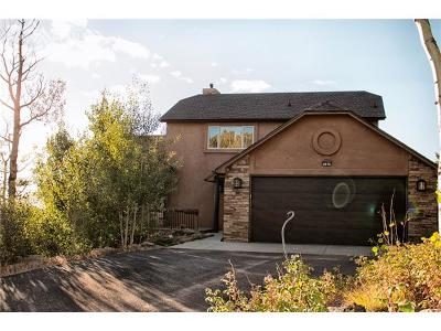 Manitou Springs Single Family Home For Sale: 2075 Deer Mountain Road