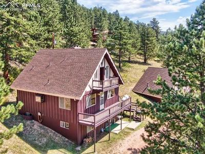 Woodland Park Single Family Home For Sale: 1891 Rampart Range Road