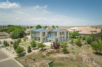 Pueblo Single Family Home For Sale: 1111 Lavender Way