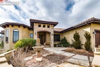 Colorado Springs Single Family Home For Sale: 6421 Farthing Drive