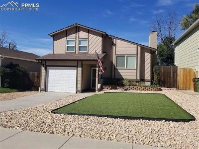 Colorado Springs Single Family Home For Sale: 2640 Fredricksburg Drive