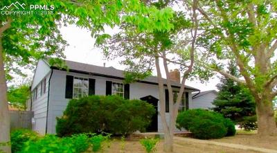Pueblo Single Family Home For Sale: 39 Macalester Road