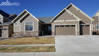 Colorado Springs Single Family Home For Sale: 8448 Boulder Banks Court