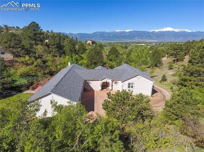 Colorado Springs Single Family Home For Sale: 4520 Brady Road