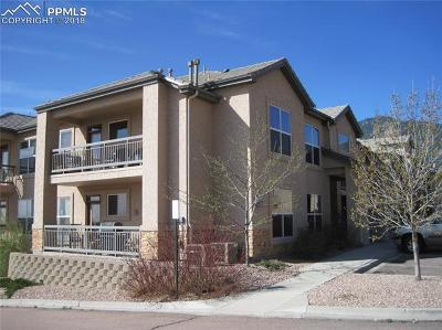 Colorado Springs Condo/Townhouse For Sale: 605 Cougar Bluff Point #109