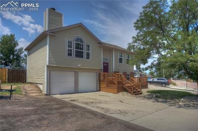 Single Family Home For Sale: 3240 Springnite Drive