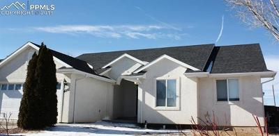 Single Family Home For Sale: 4215 Getaway Place