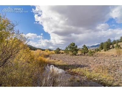 Guffey Residential Lots & Land For Sale: 6384 Highway 9