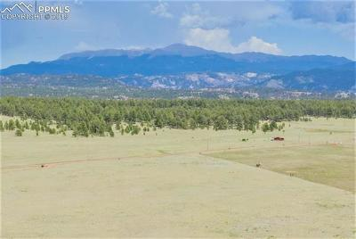 Guffey Residential Lots & Land For Sale: 2225 Doe Valley Road