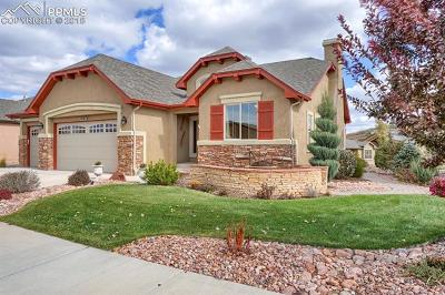 Colorado Springs Single Family Home For Sale: 13273 Dominus Way