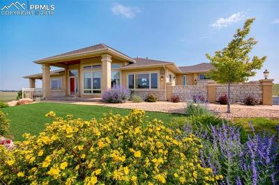 Colorado Springs Single Family Home For Sale: 17075 Pony Pond Drive